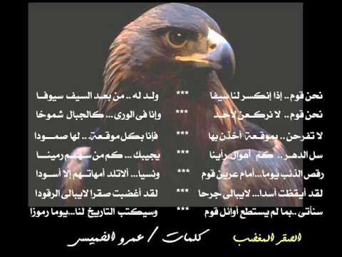 الصقر العربى المغضب فى الكبرياء و التحدى - YouTube: http://www.youtube.com/watch?v=k5Wy7UmRNHg