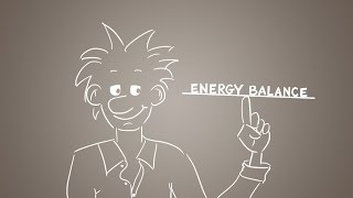 Energy balance explained - get the balance right!