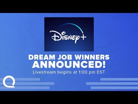 Announcing Our Picks For The Disney+ DREAM JOB!!