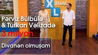 Pərviz Bülbülə & Türkan Vəlizadə  - Divanən olmuşam (Xüsusi Layihə)