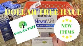 New July Dollar Tree Haul - New Items