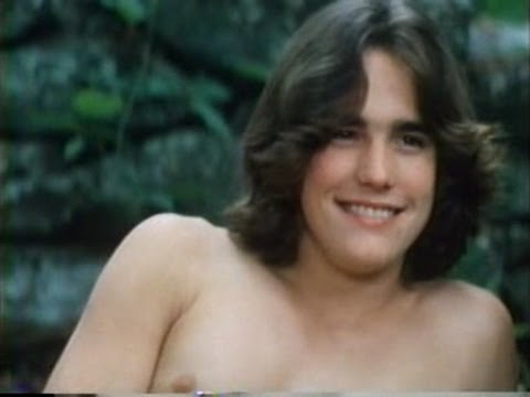 THE FILMS OF MATT DILLON