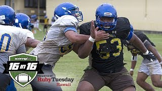 16in16 Football Preview: Hilo Vikings (2017)
