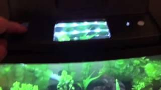 interpet insight 64 litre aquarium