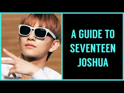 👉A(n) (Un)helpful Guide To Seventeen Joshua👈