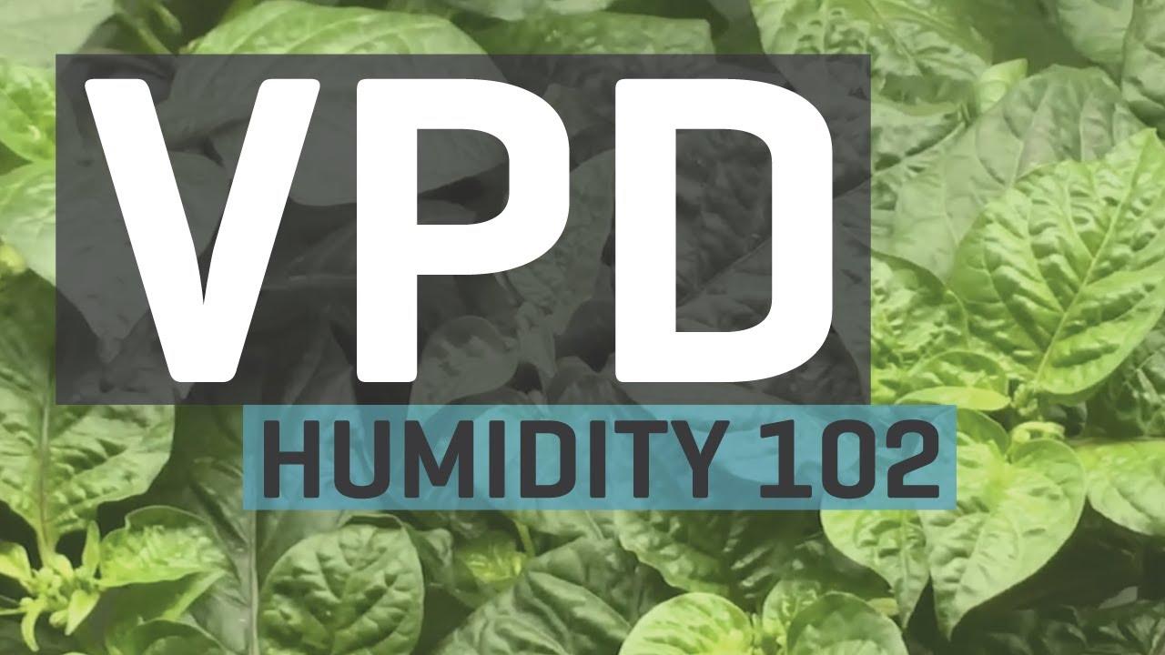 Humidity 102 Vapor Pressure Deficit Vpd Chart
