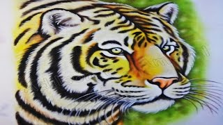 Pintura de Animal no Tecido – Tigre