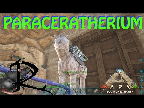 Ark Scorched Earth -- How to Tame  PARACER (PARACERATHERIUM)