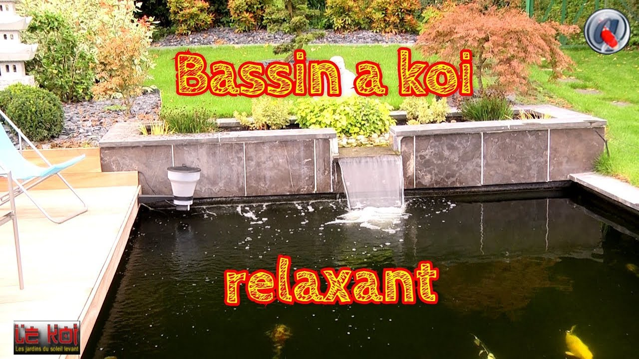 un bassin a koi relaxant youtube. Black Bedroom Furniture Sets. Home Design Ideas