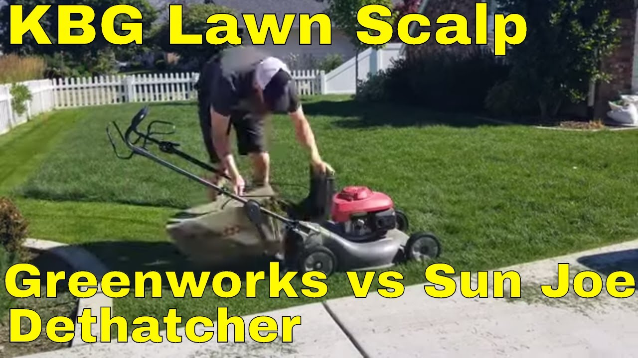 Greenworks vs sun joe dethatcher  Lawn Scalp for KBG melting out fungus,  leaf spot  fungus treatment