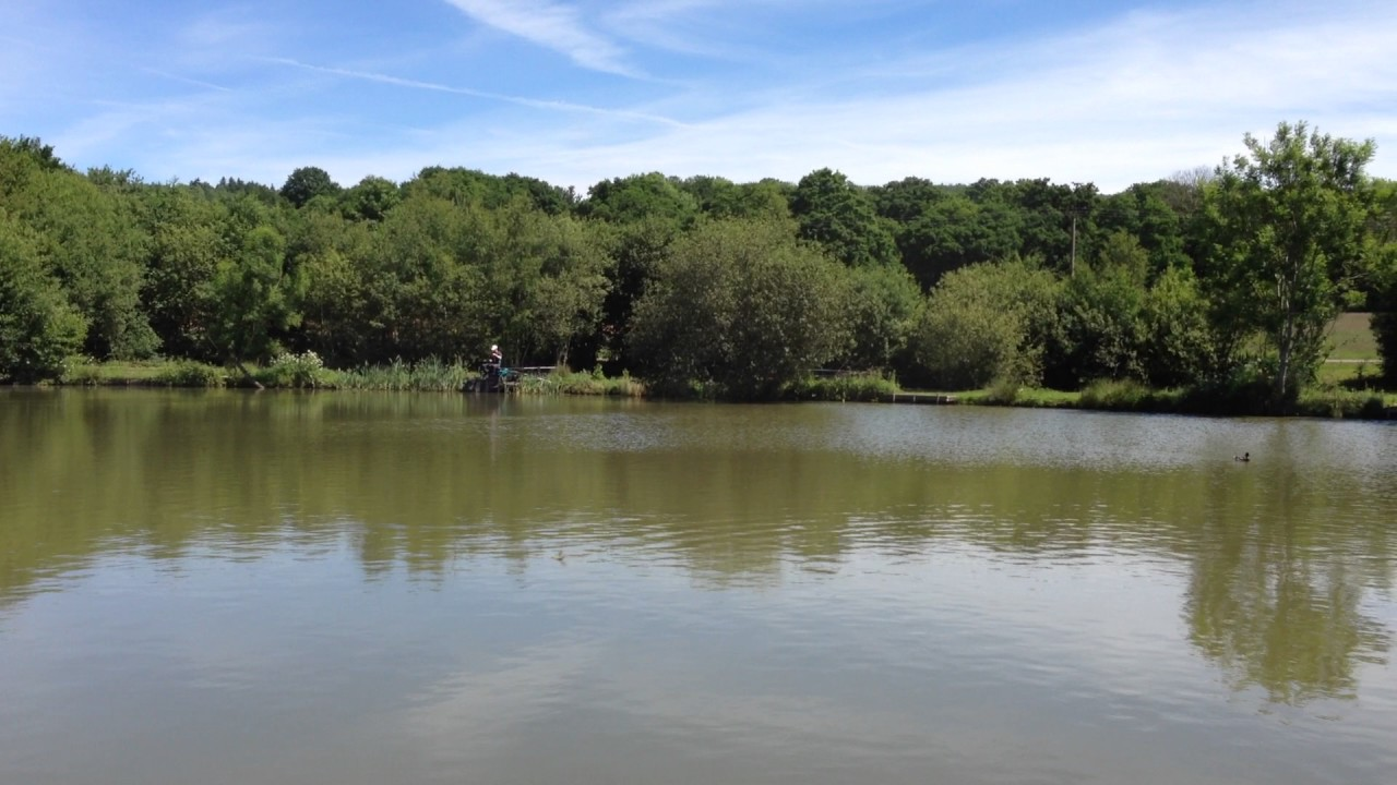 Willinghurst Top Lake Peg 10 Youtube
