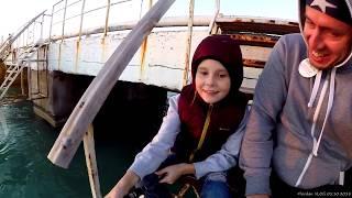 #ГЕЛЕНДЖИК #31 Морская рыбалка ЗЛАТЫ с пирса, интересное кафе, начало работ в офисе 04.10.2018