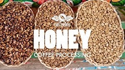 Honey Coffee Processing