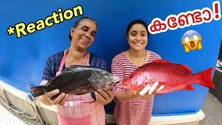മീനും പിടിച്ചു വീട്ടിൽ ചെന്നപ്പോ!!!! | Backwater Fishing Kerala