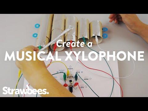 Create a Musical Xylophone - English
