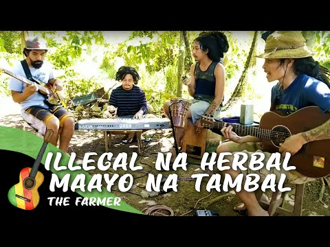 Illegal na Herbal Maayo na Tambal | The Farmer(original)