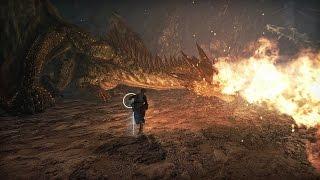 Dragon's Dogma Online_gallery_1