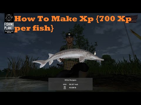 Fishing Planet - How to Make Loads of XP (San Joaquin Delta)
