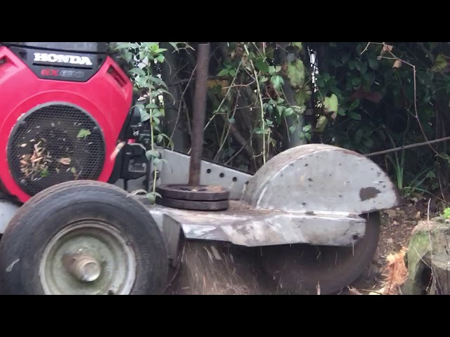 Pensacola stump grinding with modified dosko