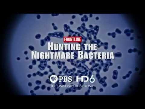 Frontline: Hunting The Nightmare Bacteria