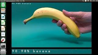 Baixar Jetson Nano: Vision Recognition Neural Network Demo