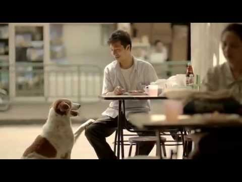 A Very Sad Heart Touching Story Short Documentary Film Thai Life Insurance