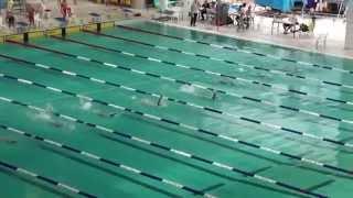 2014-15新界區小學界游泳比賽女丙50背泳決賽