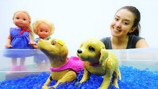 Игры с Барби на улице: Соревнования для собаки Штеффи!