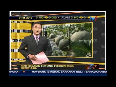 BIZ MALAYSIA -   PENYELESAIAN SOKONG PEKEBUN KECIL  GROW ASIA  [31 MEI 2016]