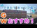 【イルカとキャンプ 】パンダTCで【ロードバイク キャンプ】愛媛県 ドルフィンファー…