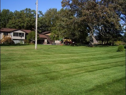 Lawn Care and Snow removal for Waupaca, Stevens Point, Plover, Wisconsin Rapids and all of Wisconsin