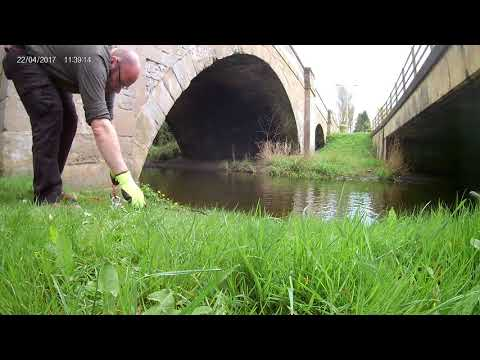 River Derwent at East Ayton