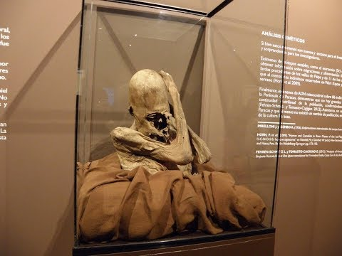 DNA Results Of The Paracas Elongated Skulls Of Peru: Part 2: Black Sea Connection