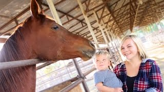 TODDLER REACTS TO HORSE!
