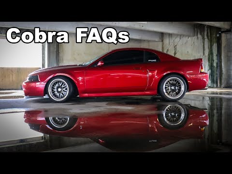 What you should know when buying 03-04 Cobra Terminator! FAQ