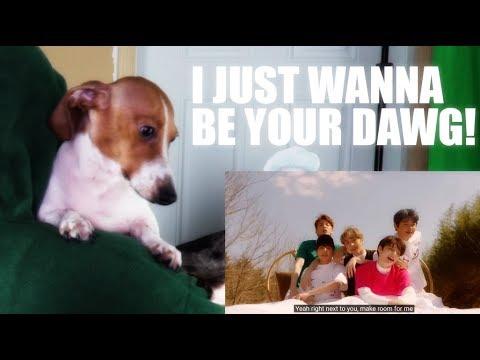 TXT &39;Cat & Dog&39;  MV Reaction