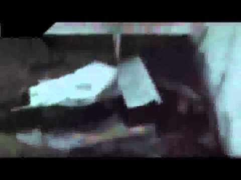 شام ريف دمشق كفربطنا مجزرة بحق المدنيين على يد عصابات الاسد المجرمة 6 8 2012