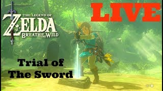 The Legend of Zelda Breath of The Wild: Tiral of The Sword