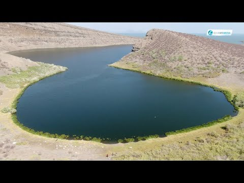 And here comes Turkana's Beauty