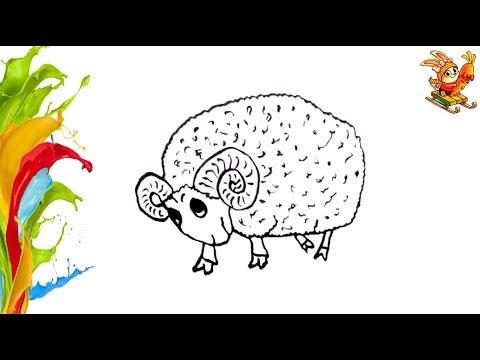 Раскраска для детей  БАРАШЕК. Coloring And Drawing  LAMB. Учим цвета. Learning Colors.