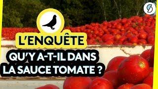 L'enquête : qu'y a-t-il dans la sauce tomate ? - #ONPDP