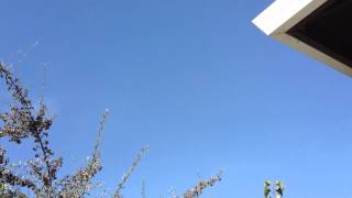 UFO Over Salinas, California September 11, 2012