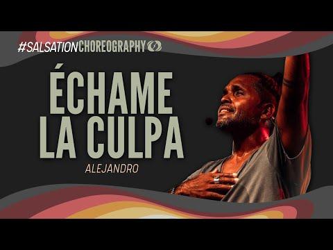 Luis Fonsi - Échame La Culpa - Salsation® choreography by Alejandro Angulo