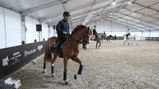 O2 arena ožila koňmi a odpočítává hodiny do startu