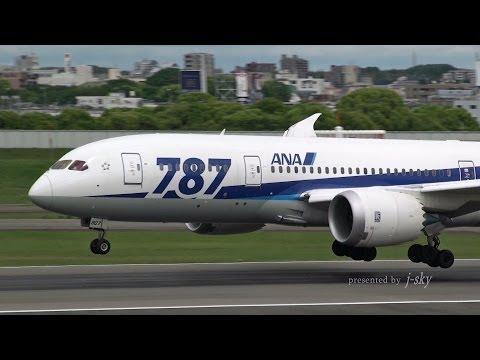 [ITM/RJOO] ANA Boeing 787-8 Dreamliner [JA807A] landing [伊丹空港・全日空]