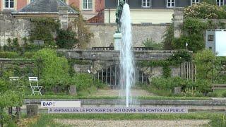 Yvelines | Versailles : Pour la BAP!, le potager du roi ouvre ses portes au public