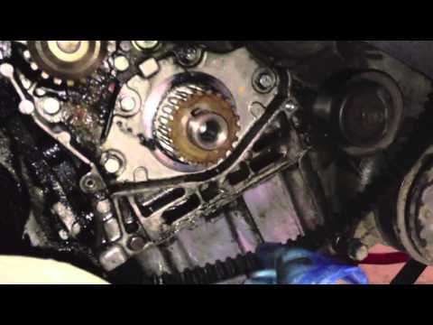 How To Peugeot 206 20 Hdi Turbo Diesel Cambelt Change Including Waterpump Timing Belt