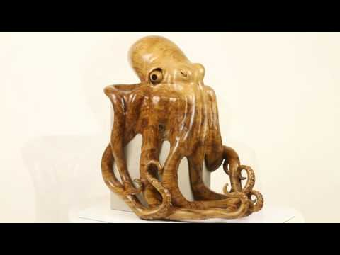 Octopus in Sweet Chestnut Burr