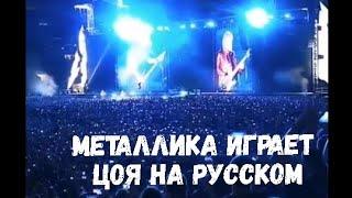 Metallica прямо сейчас спела песню Цоя «Группа крови» на русском языке