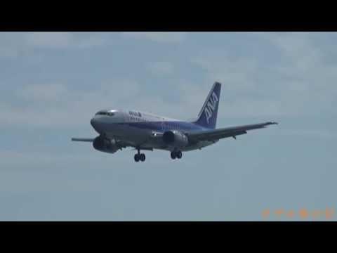伊丹空港(ITM) - 新潟空港(KIJ) ANA ボーイング 737-500 ドルフィン